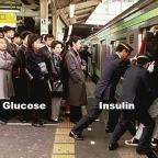 Insuliiniresistenssi – kaikkien elintasosairauksien äiti, osa 1